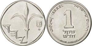 Lot-10-Coins-Israel-New-Shekel-Collect-Sheqel-Jewish-Israeli-Money-Nis-Free-Ship