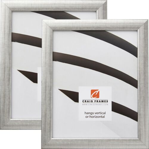 Craig Frames Contemporary 2-Piece Set 1 Inch Scratched Silver Picture Frame