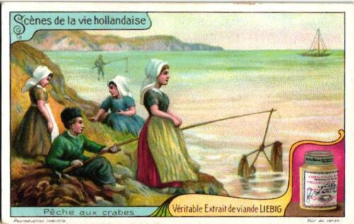 6 Cards 1913  Scenes from Dutch Life Chromolitho  Crab Fishing Making Nets