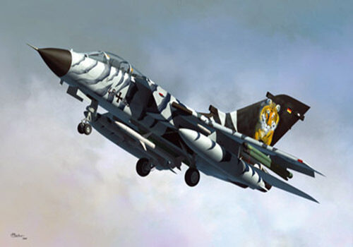 Hobbyboss 1 48 80354 Tornado ECR Static Aircraft Aircraft Aircraft model kit db3305