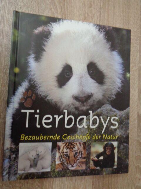 Tierbabys ~  Bezaubernde Geschöpfe der Natur