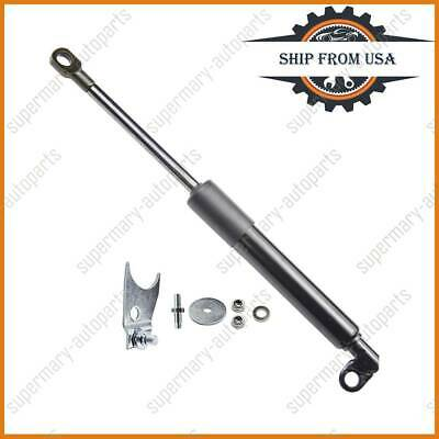 Tailgate Shock Assist for 2005 Chevy Silverado 2500  DZ43100