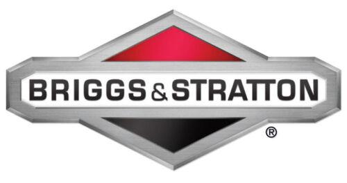 GENUINE BRIGGS /& STRATTON FUEL FILTER 808116 494581 Vanguard filter 808116S