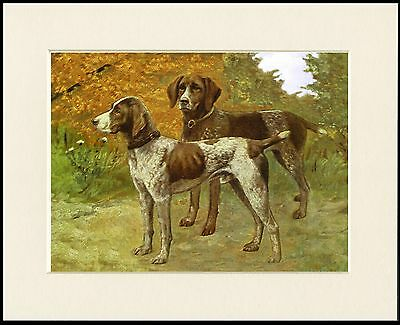 GERMAN WIREHAIRED POINTER GROUP OF DOGS DOG PRINT MOUNTED READY TO FRAME