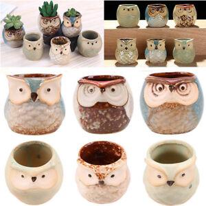 Image Is Loading Mini Ceramic Owl Succulent Plant Container Pot Flower