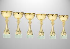 6er Serie gold Pokale H.=16cm - 26cm mit Emblem nach Wahl und Schild auf Marmor