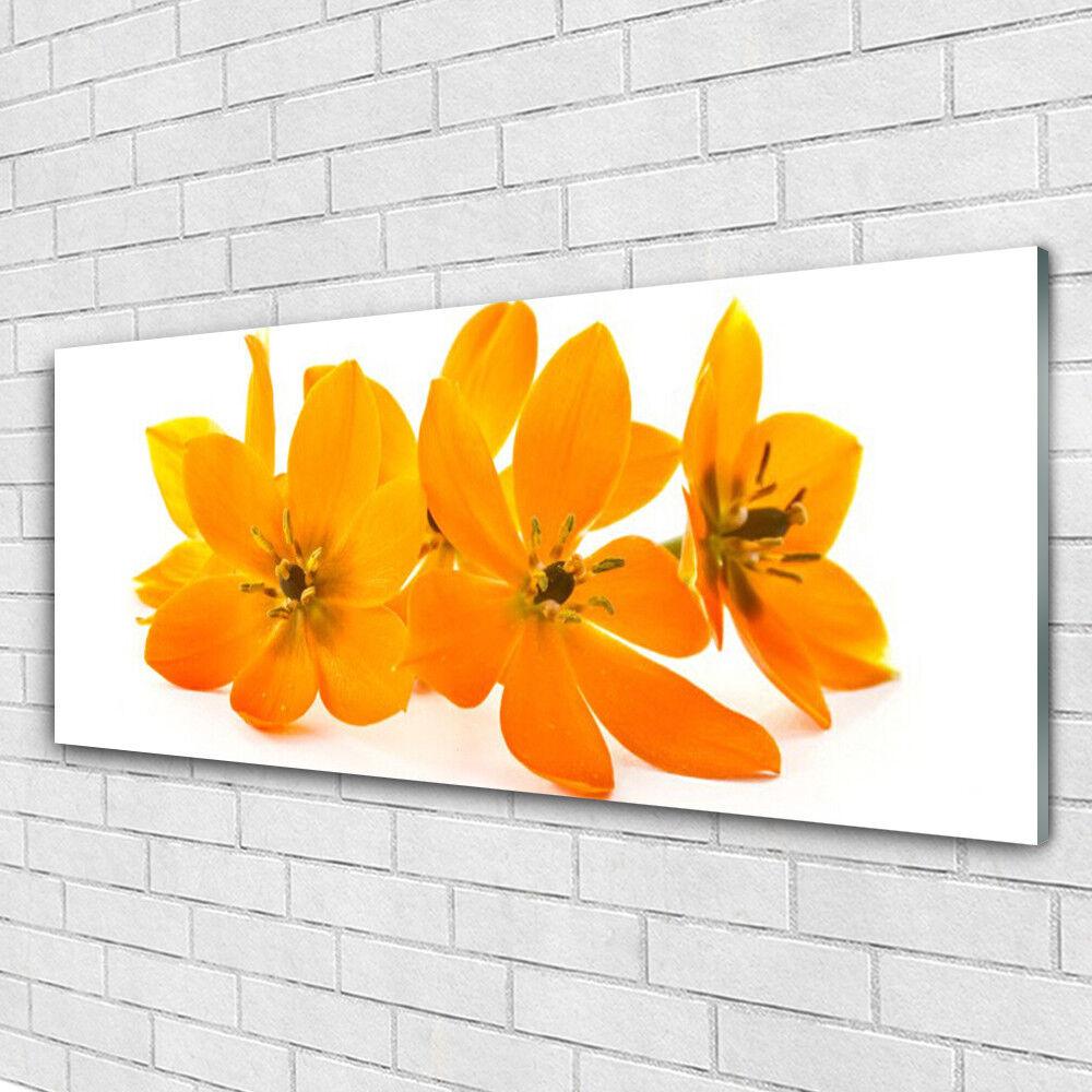 Tableau mural Image sur Plexiglas® 125x50 Floral Floral Floral Fleurs 2ff94e