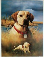 "Larry Chandler ""Yellow Lab""- large fine art print of handsome dog and as a puppy"