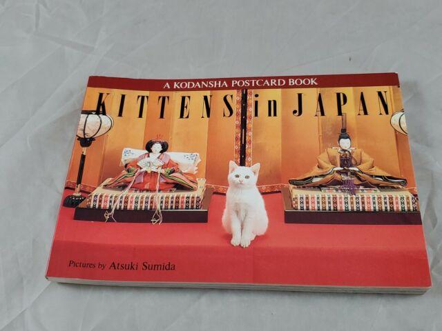 Kittens in Japan Atsuki Sumida Postcard Book 24 Postcards Photo
