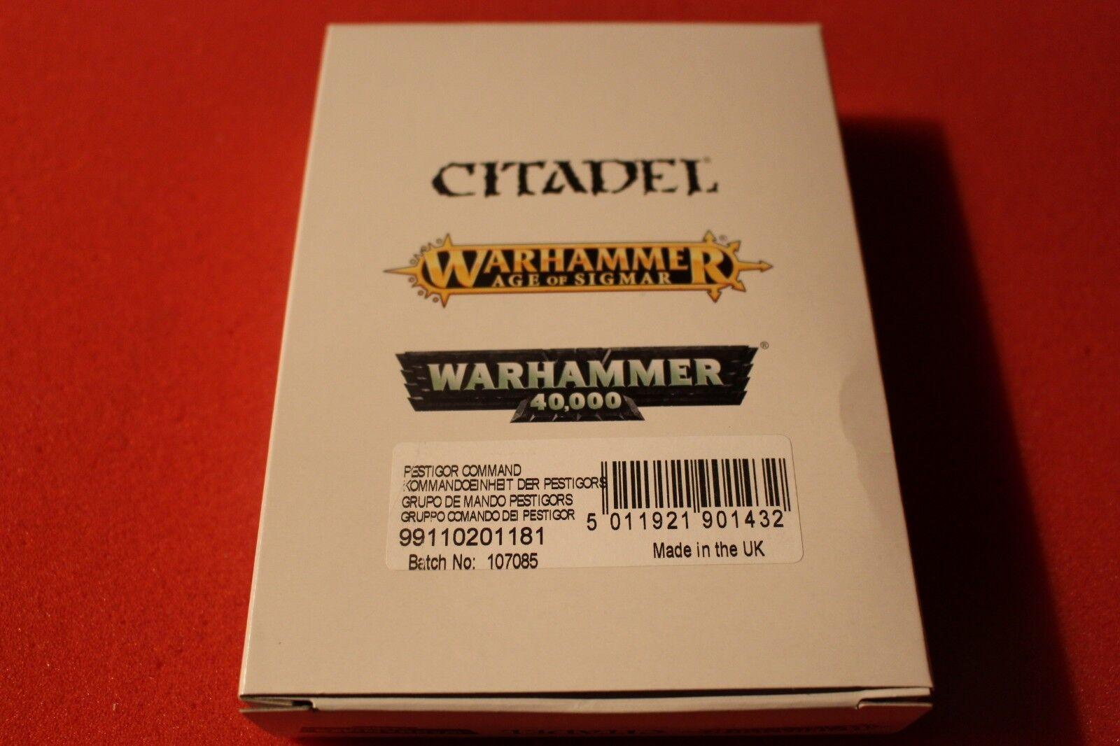 Games Workshop Warhammer Pestigors Pestigor Beastmen of Nurgle Command New Metal