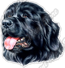 Newfoundland Dog newfie newfy car window vinyl decal sm
