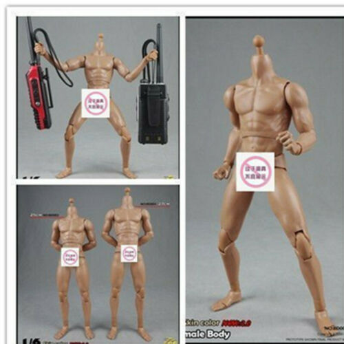 """1//6 Standard Muscle Male Body Model COOMODEL BD003 Fit 12/"""" Figure Collection"""