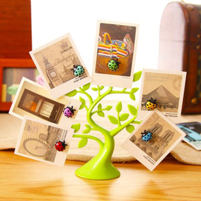 Lucky Tree Magnetic Photo Frame