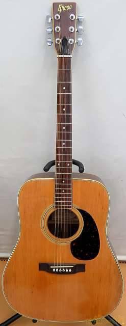 GRECO F250 1970 Akustische Gitarre mit Gig Case
