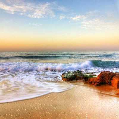 Charming ocean 10'x10' CP Backdrop Computer-painted Scenic Background ZJZ-546