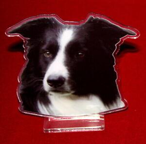 statuette-photosculptee-10x15-cm-chien-border-collie-10-dog-hund-perro-cane
