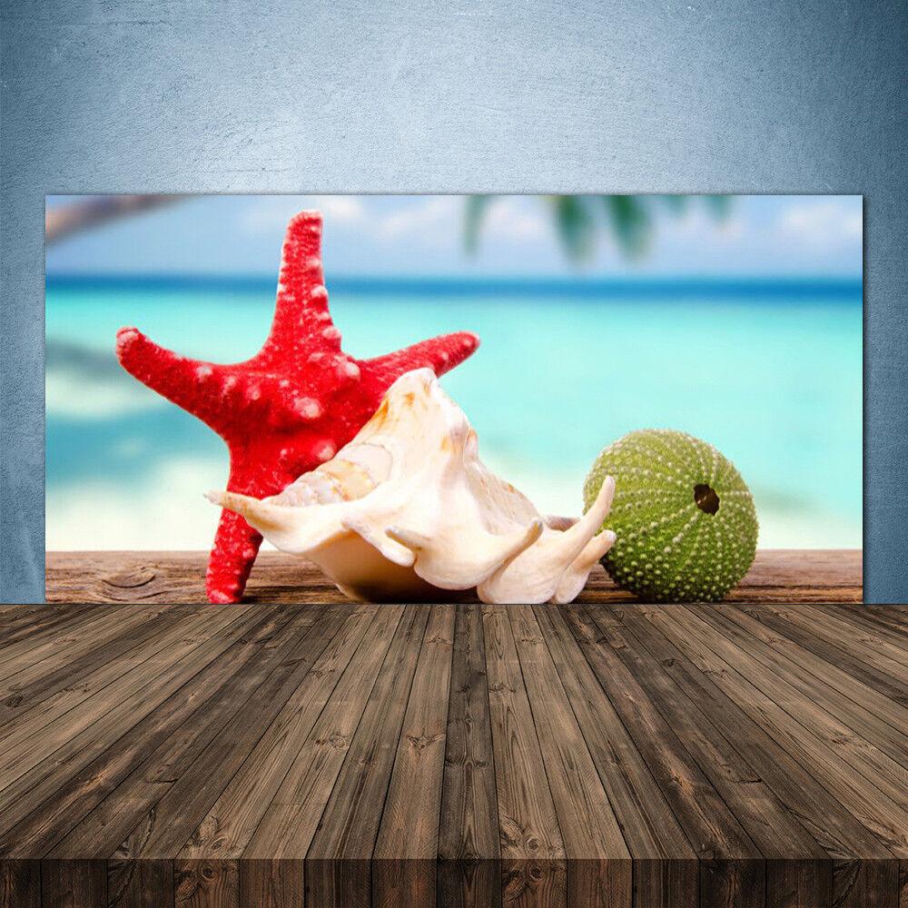 Vidrio Templado Cocina salpicaduras 140x70 concha mariscos Arte
