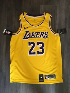Details about Nike NBA Lakers Jersey LeBron James Icon Edition Swingman AA7099-741 Mens L 48