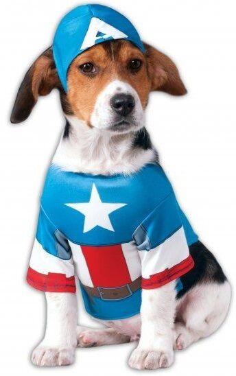 Haustier Hund Katze Captain America Superhelden  | Haben Wir Lob Von Kunden Gewonnen