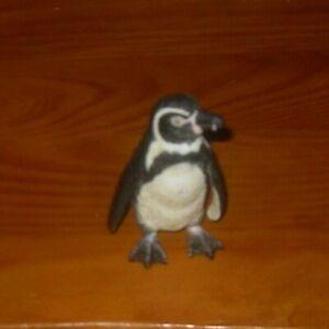 AAA-elc-Early-Learning-Centre-Figura-di-Plastica-Pinguino-di-Humboldt