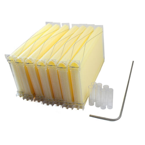 Cedarwood Super Brood Box Beekeeping 7X Auto Flow Honey Beehive Hive Frames