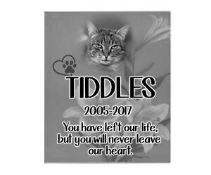 Pet Cat Memorial Personnalisé Photo Plaque De Deuil Condoléances Poème Signe-afficher Le Titre D'origine Dans La Douleur