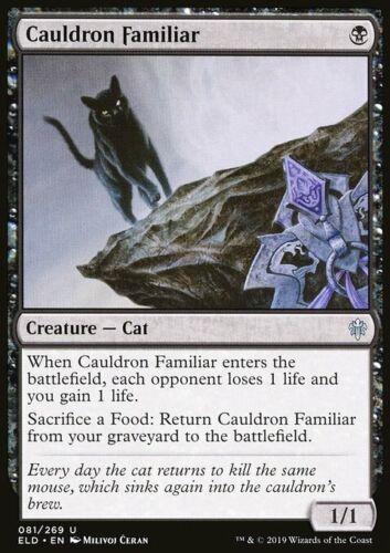 MTG Cauldron Familiar Magic Card Throne of Eldraine