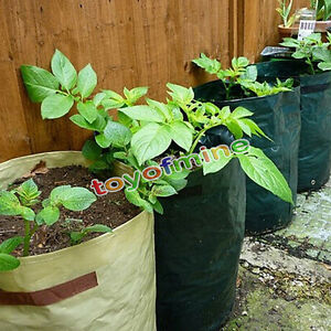 Vegetables grow planting bags garden balcony potatoes tomatoes planter pots fc ebay - Veggies that grow on balcony ...