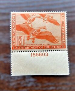 US Federal Duck Stamp Scott# RW12 $1 1944 Migratory Bird Hunting Non-Hinged Gum