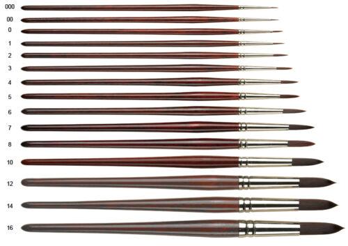 Pro Arte Artist Paint Brush Series 202 Round Artist Oil Acrylic Brushes Range