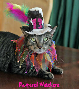 Image Is Loading Cat Dog Birthday Hat Party