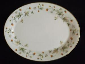 Royal-Doulton-Strawberry-Cream-13-034-Platter-EXC