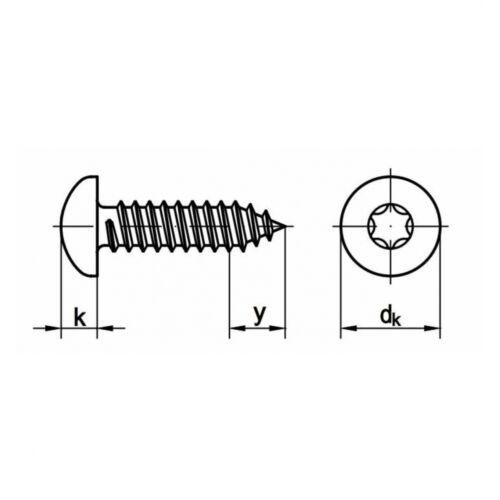 200x DIN 7981 Linsenkopf-Blechschrauben TORX® Form C 4.8 x 9.5 A4 blank