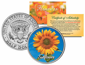 SUNFLOWER-PLANT-JFK-Kennedy-Half-Dollar-US-Colorized-Coin