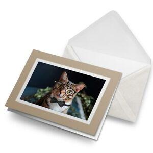 Greetings-Card-Biege-Geek-Cat-with-Eye-Glasses-Bowtie-16718