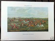 Antique Vintage Sporting Fox Hunting Hound Print Picture Rare Equine Memorabilia