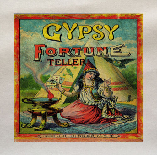 Gypsy Fortune Teller Printed Fabric Panel Make A Cushion Upholstery Craft