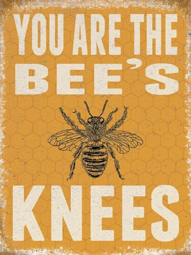 FUNNY METAL SIGN XMAS GIFT IDEA FOR HER WOMEN MUM AUNTIE BEE KEEPER PRESENT