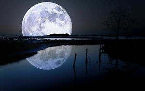 WHITE-MOON-PICTURE-PRINT-CANVAS-WALL-ART-VARIOUS-SIZES