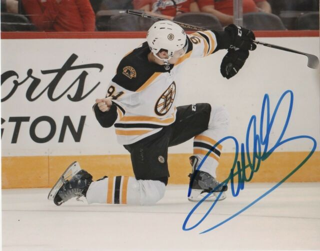 Boston Bruins Jakub Lauko Autographed Signed 8x10 NHL Photo COA #5