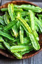 50 GRAINES de Pois Asperge Potager Légumes Plantes