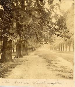 Angleterre-Southampton-une-avenue-vue-generale-Vintage-albumen-print-Tira