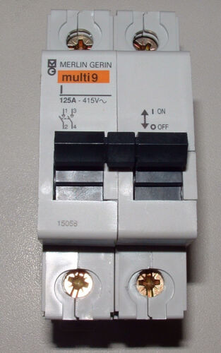 Merlin Gerin 15058  125A  2  Pole Switch Disconnector 415V Brand New