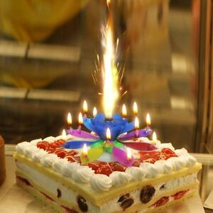 Image Is Loading Magic Lotus Flower Birthday Party Spin Music Candles