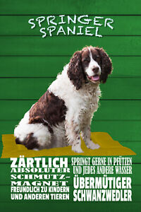 Springer-Spaniel-Tin-Sign-Shield-Arched-Metal-7-7-8x11-13-16in-W1312