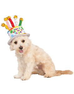 Détails Sur Animal Chien Chat Fête Joyeux Anniversaire Gâteau Chapeau Avec Bougies