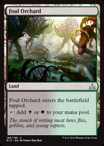 Mrm english 4x foul orchard-orchard infamous mtg magic rix