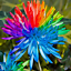 100Pcs-Rainbow-Chrysanthemum-Flower-Seeds-Rare-Colorful-Plant-for-Home-and-Field thumbnail 2
