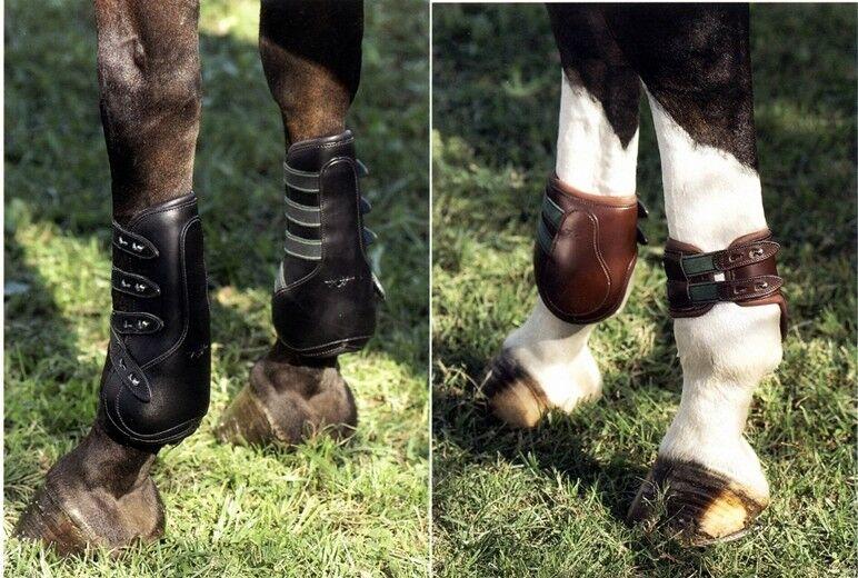 Set Paratendini e Paranocche Equipe in cuoio e pelle Tendon Boots Leather Lined