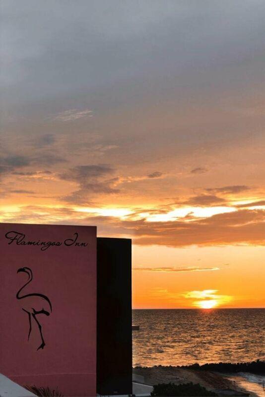 Increible oportunidad Hotel en Venta frente al mar en Chuburna Puerto Yucatan MX